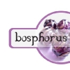 Logo: Bosphorus Designs