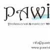 PAWI / The Professional American Women of Istanbul
